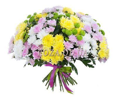 """""""Большой букет из 35 хризантем"""" в интернет-магазине цветов roza.od.ua"""