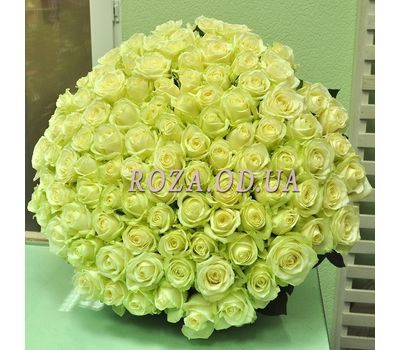 """101 white rose 60 cm - view 2"" in the online flower shop roza.od.ua"