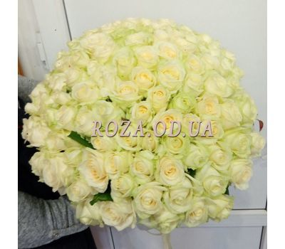 """101 white rose 60 cm - view 4"" in the online flower shop roza.od.ua"