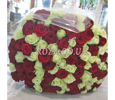 """101 rose red and white - view 1- view 1"" in the online flower shop roza.od.ua"