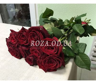 """11 roses - view 3"" in the online flower shop roza.od.ua"