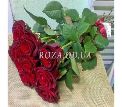 """11 roses - view 5"" in the online flower shop roza.od.ua"