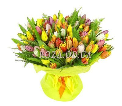 """101 multi-colored tulip"" in the online flower shop roza.od.ua"
