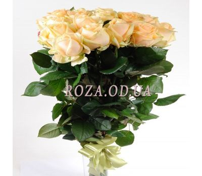 """11 creamy imported roses"" in the online flower shop roza.od.ua"