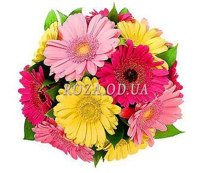 """""""13 разноцветных гербер"""" в интернет-магазине цветов roza.od.ua"""