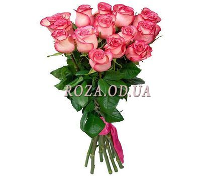 """15 imported pink roses"" in the online flower shop roza.od.ua"