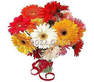"""17 gerberas"" in the online flower shop roza.od.ua"