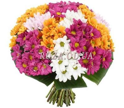 """""""19 chrysanthemums"""" in the online flower shop roza.od.ua"""