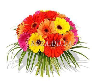 """21 gerberas"" in the online flower shop roza.od.ua"