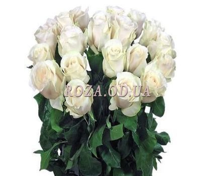 """""""21 imported white rose"""" in the online flower shop roza.od.ua"""
