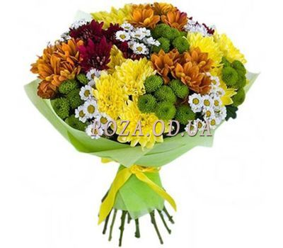 """23 multi-colored chrysanthemums"" in the online flower shop roza.od.ua"