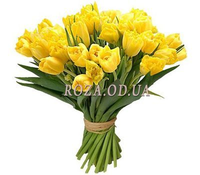 """25 yellow tulips"" in the online flower shop roza.od.ua"