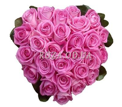 """27 pink roses heart"" in the online flower shop roza.od.ua"