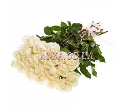 """31 imported white rose"" in the online flower shop roza.od.ua"
