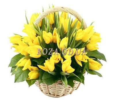 """45 yellow tulips"" in the online flower shop roza.od.ua"