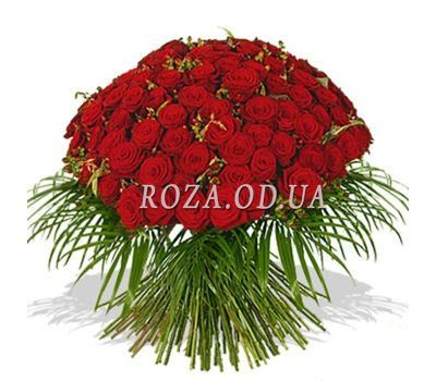 """65 red roses 60 cm"" in the online flower shop roza.od.ua"