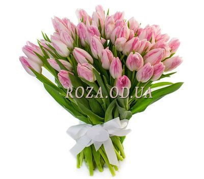 """""""65 pink tulips"""" in the online flower shop roza.od.ua"""
