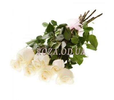 """7 imported white roses"" in the online flower shop roza.od.ua"
