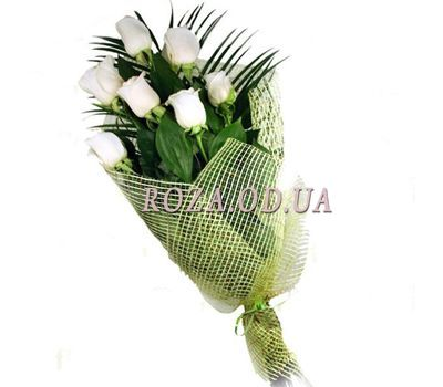 """7 import roses"" in the online flower shop roza.od.ua"