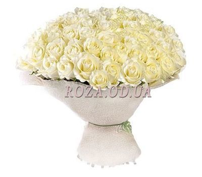 """75 white roses 60 cm"" in the online flower shop roza.od.ua"