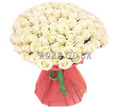 """75 white roses 70 cm"" in the online flower shop roza.od.ua"