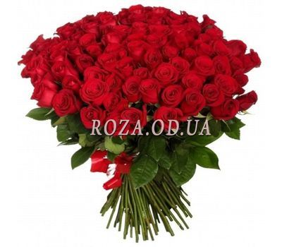 """75 red roses 60 cm"" in the online flower shop roza.od.ua"