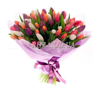 """75 multi-colored tulips"" in the online flower shop roza.od.ua"