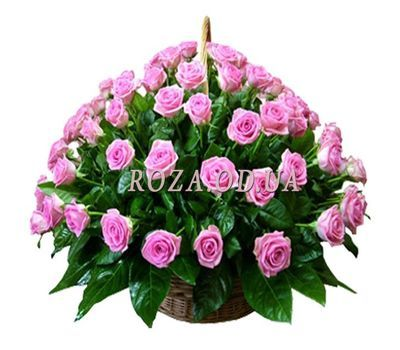 """75 pink roses in the basket"" in the online flower shop roza.od.ua"
