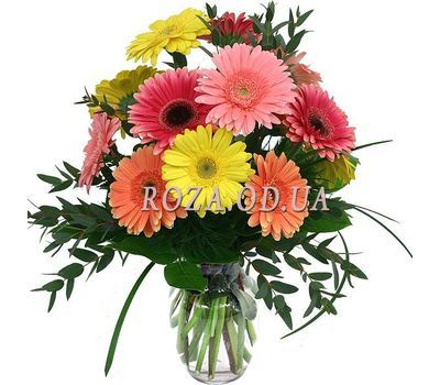 """Bouquet 11 gerberas"" in the online flower shop roza.od.ua"