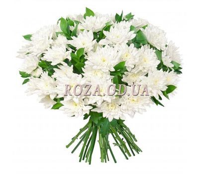"""15 chrysanthemums"" in the online flower shop roza.od.ua"