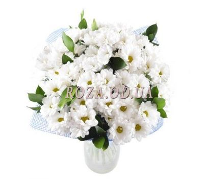 """Bouquet of flowers from 15 white chrysanthemums"" in the online flower shop roza.od.ua"
