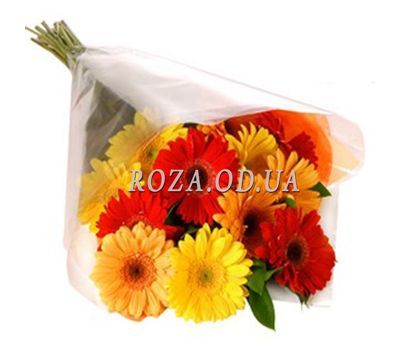 """Bouquet of 13 gerberas"" in the online flower shop roza.od.ua"