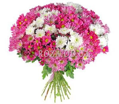"""Bouquet of 15 chrysanthemums"" in the online flower shop roza.od.ua"