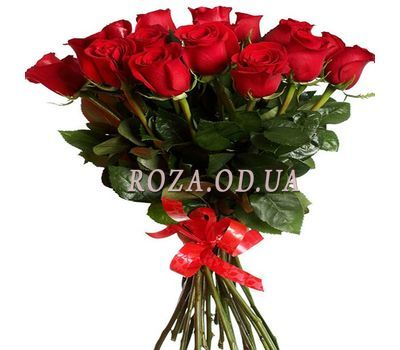 """Red roses 17 pcs."" in the online flower shop roza.od.ua"