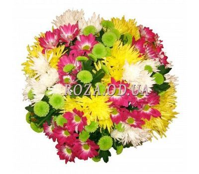 """Bouquet of 21 chrysanthemums"" in the online flower shop roza.od.ua"