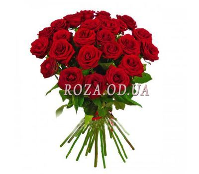 """Bouquet of red roses OD 018"" in the online flower shop roza.od.ua"