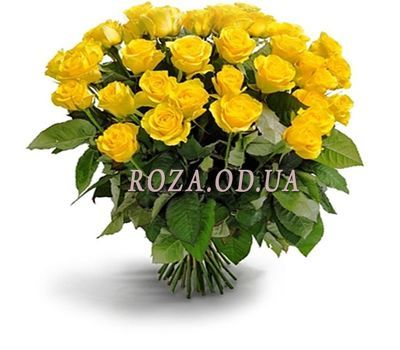 """Yellow roses 25 pcs."" in the online flower shop roza.od.ua"