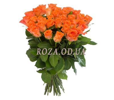 """Orange roses in Odessa:35 pieces."" in the online flower shop roza.od.ua"