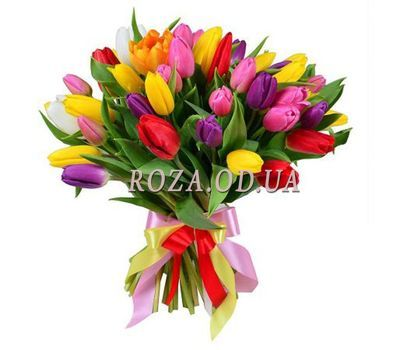 """Bouquet of 55 multi-colored tulips"" in the online flower shop roza.od.ua"