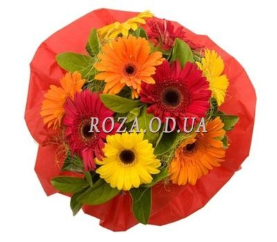 """9 varicoloured gerberas"" in the online flower shop roza.od.ua"
