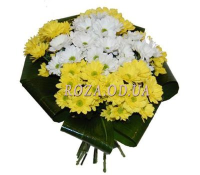 """Bouquet of chrysanthemums"" in the online flower shop roza.od.ua"