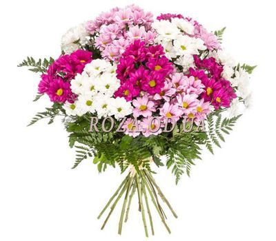 """Bouquet of multicolored chrysanthemums"" in the online flower shop roza.od.ua"