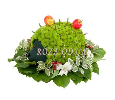 """Hedgehog of flowers"" in the online flower shop roza.od.ua"