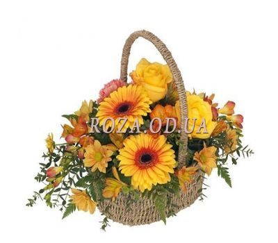 """""""Basket of flowers from gerberas and chrysanthemums"""" in the online flower shop roza.od.ua"""