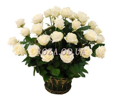 """Basket of 29 white roses"" in the online flower shop roza.od.ua"