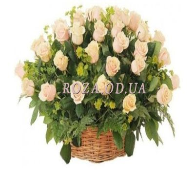 """51 cream-colored roses"" in the online flower shop roza.od.ua"