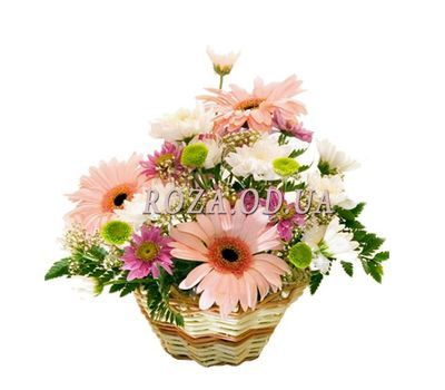 """Basket of flowers from gerberas and chrysanthemums"" in the online flower shop roza.od.ua"