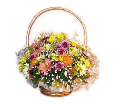 """15 multi-colored chrysanthemums"" in the online flower shop roza.od.ua"