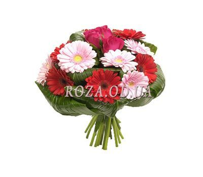 """""""Букет из роз и гербер"""" в интернет-магазине цветов roza.od.ua"""