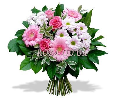 """Bouquet of roses, gerberas and chrysanthemums"" in the online flower shop roza.od.ua"